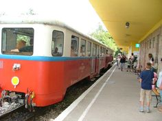 The Pioneer's Small Train - Buda, Hungary