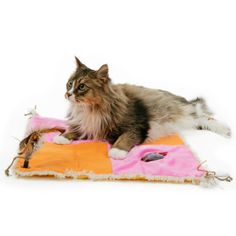 Petlinks System Snap+ Busy Body Activity Mat for Cats - One section makes mysterious crinkly noises, another holds a concealed mouse toy, and another features a refillable catnip pouch. Two snap-on feather toy sanchor the corners of the mat for added fun.