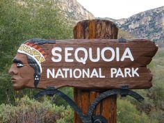 Sequoia NP - Bienvenue !