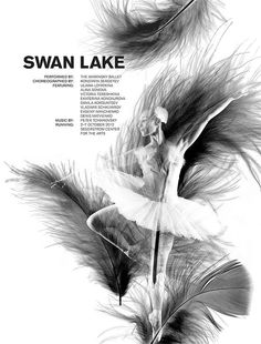 A pair of yin and yang graphic ballet posters advertising Swan Lake. Ballet Illustration, Ballet Posters, Swan Lake Ballet, Diy Crafts For Home Decor, Lake Art, Higher Design, Black Swan, Dance Photography, Feather Earrings