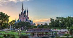 12 Things Nobody Tells You About Visiting Magic Kingdom