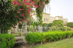 Lake View | Well Maintained | Vacant | Private Garden