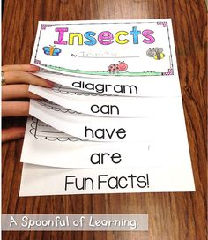Insects! Literacy and Math Fun!