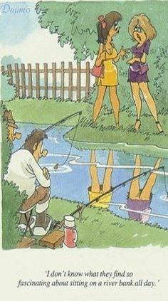 How many beaver you see while fishing?