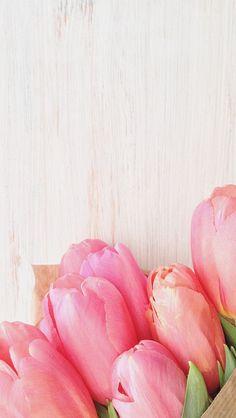 iPhone wallpaper tulips