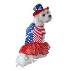 Anit Accessories Patriotic Dress Dog Costume, 12-Inch --- bizz.mx/35p