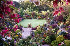 A hint of autumn in the late summer garden