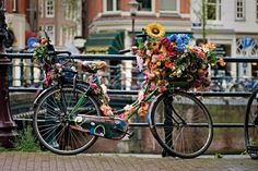 Bicycle Bouquet in Holland ♥