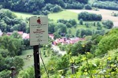 Schöner Tag noch!: Blick vom Tauberhasen-Weinberg ins romantische Taubertal