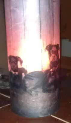 Home made vase for gifts. Picture printed on vellum and mog poged on vase from dollar store. Great gift idea!