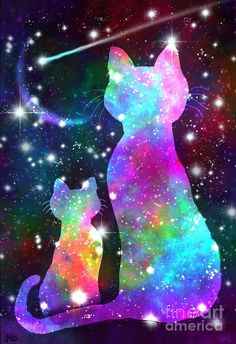 More Cosmic Cats by Nick Gustafson - A - Katzen I Love Cats, Crazy Cats, Cool Cats, Galaxy Cat, Space Cat, Cat Tattoo, Cat Drawing, Galaxy Wallpaper, Animal Drawings