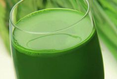 Top 10 Reasons To Start Your Day With Water Grass Juice