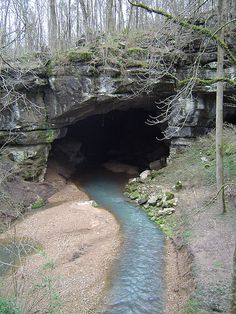 Stream running into Russell Cave, Alabama | Russell Cave Nat… | Flickr