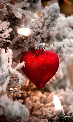 Afbeelding via We Heart It https://weheartit.com/entry/141936949 #christmas #cute #heart #red #winter
