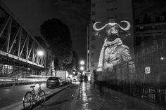 French Artist Julien Nonnon Urban Safari Paris 08 - Le Coq de la Mare, one rue de la Mare.