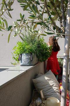 #TheGreenBlock Urban Planters, Green Bag, North America, Bloom, Yard, Pockets, Plants, Patio, Plant