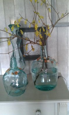 Groene glazen flessen met Kornoelje-takken uit eigen tuin