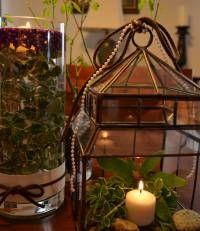 Proven Winners   Creating a Christmas Lantern