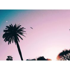 """""""Paradise was made for tenders hearts,hell for loveless hearts""""  #sky #pink #parallelworld #minimal #minimalphotography"""
