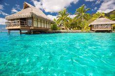 Prenotazioni per Crociere Vacanze Hotel Viaggi Shopping - Mi Conviene ECommerce Shopping GF