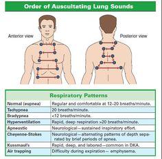 Auscultating Lung Sounds