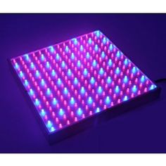 The Grow Lamp is made up of 225 bright Red and Blue LED lights at This product is a must have for any garden, amateur or professional, and is perfect for use in hydroponics or any other growing methods. Blue Led Lights, Led Grow Lights, 1w Led, Grow Lamps, Farm Tools, Light Panel, Life Organization, Hydroponics