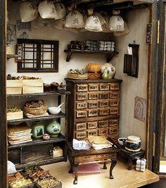 Traditional oriental Herbal Medicine Shop- handmade Dollhouse Miniatures