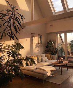 when-the-sun-hits-the-couch-whenthesunhits-sun-favoriteplace-home-interior-couch-urbanjungle-light-sunlight-plants-plants-plants/ SULTANGAZI SEARCH Aesthetic Room Decor, House Goals, Dream Rooms, Style At Home, My Dream Home, Home And Living, Cozy Living, Modern Living, Japanese Living Rooms