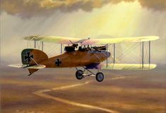 Testing Time, by Russell Smith (Albatros CXII)