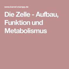 Die Zelle - Aufbau, Funktion und Metabolismus