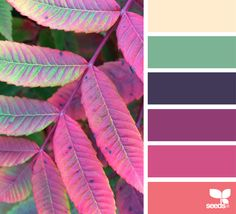 { autumn spectrum } image via: @designseeds