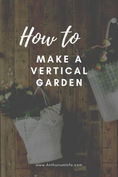 A vertical garden is the perfect solution for a small balcony because it makes the best possible use of vertical space! Beautiful Flowers Pictures, Flower Pictures, Macrame Plant Hangers, Wall Paint Colors, Foliage Plants, Cut Flowers, Fairy Lights, Houseplants, Planting Flowers
