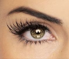 Wash an old mascara container and fill with: 1/4 of the container with Castor Oil, 1/2 Vitamin E Oil, 1/4 Aloe Vera Gel. Mix the concoction together as well as you can with your mascara wand, and apply a light layer to lashes (or brows) every night before bed. Castor oil thickens your lashes while aloe vera gel lengthens. Vitamin E accelerates length. Give it a month for results.