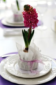 Wonderful hyacinth party favor~even the kids will enjoy planting!