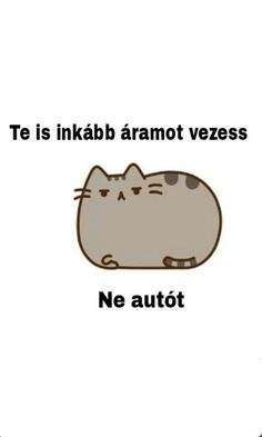 Find images and videos about cat, magyar and auto on We Heart It - the app to get lost in what you love. Pusheen Cat, Grumpy Cat, Editing Pictures, Hungary, Kiwi, We Heart It, Haha, Sticker, Wallpapers