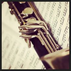 Bass clarinet is the BEST instrument out there!