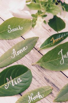Place Cards Name Cards Wedding Name Cards Place Cards Wedding Wedding Greenery Calligraphy Place Cards Seating Cards Green Wedding - Hochzeit Wedding Name Cards, Wedding Messages, Gifts For Wedding Party, Wedding Table, Green Wedding, Wedding Flowers, Wedding Greenery, Name Place Cards, Sustainable Wedding