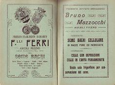3 (Augustus17) Tags: italy italia marche 1907 ascolicomera bachicoltura cesaremariotti fratelliferri libreriapierucci paginepubblicitarie mazzocchibruno