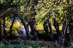 """Hansel and Gretel, Beware!"" from Maxwell Park, Pollokshields, Glasgow. SCOTLAND"