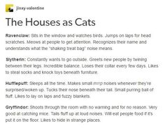 Awwww. I see Ravenclaw as a dappled light and dark grey cat with big blue eyes, Slytherin as a sleek little black cat with jade green eyes, Hufflepuff as a tiny, fluffy golden cat with little paws and huge amber eyes and Gryffindor as a bright red cat with emerald green eyes that generally looks fluffed up