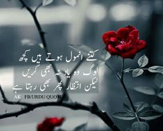 Sirf intezar hi rahta hai. Best Quotes In Urdu, Urdu Quotes, Poetry Quotes, Urdu Poetry Romantic, Love Poetry Urdu, Muslim Love Quotes, Love Quotes For Him, Pinterest Funny Quotes, Strong People Quotes