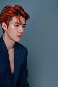 baek puts stars to shame — EXO Season's Greetings 2019 Exo Ot12, Suho Exo, Sehun Cute, Exo Lockscreen, Exo Korean, Kpop Guys, Exo Members, Taemin, Vixx