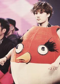 Awwwwe Kai chicken how cuuuuute Kai Exo, Suho Exo, Akdong Musician, Exo Korean, Strange Photos, Kim Jong In, Chinese Boy, K Idols, Shinee
