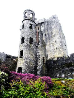 Blarney Castle, Ireland....kissing the Blarney Stone.