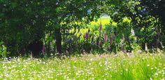 villatuin Holten - Denkers in tuinenDenkers in Tuinen | Ontwerpers van stijlvolle en tijdloze tuinen