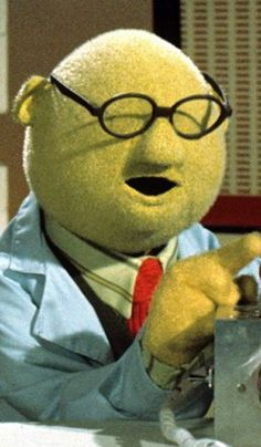 Dr. Bunsen Honeydew, the resident scientist on The Muppet Show and host of the Muppet Labs sketches. Dr. Honeydew's inventions have included a gorilla detector, exploding clothes, edible paper clips, a banana sharpener, hair-growing tonic, and a machine that can turn gold into cottage cheese.