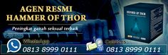 AGEN RESMI HAMMER OF THOR ASLI DI INDONESIA