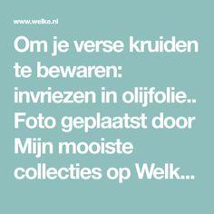 Om je verse kruiden te bewaren: invriezen in olijfolie.. Foto geplaatst door Mijn mooiste collecties op Welke.nl