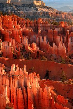 Bryce Canyon National Park | Utah