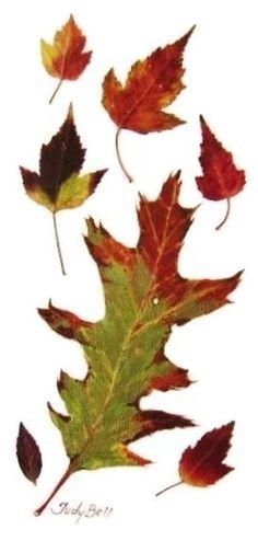 Oak and Maple Leaves original watercolor 6 by judithbelloriginals